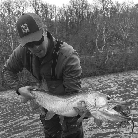 Eric Gibson getting it done with a nice Shenandoah musky.
